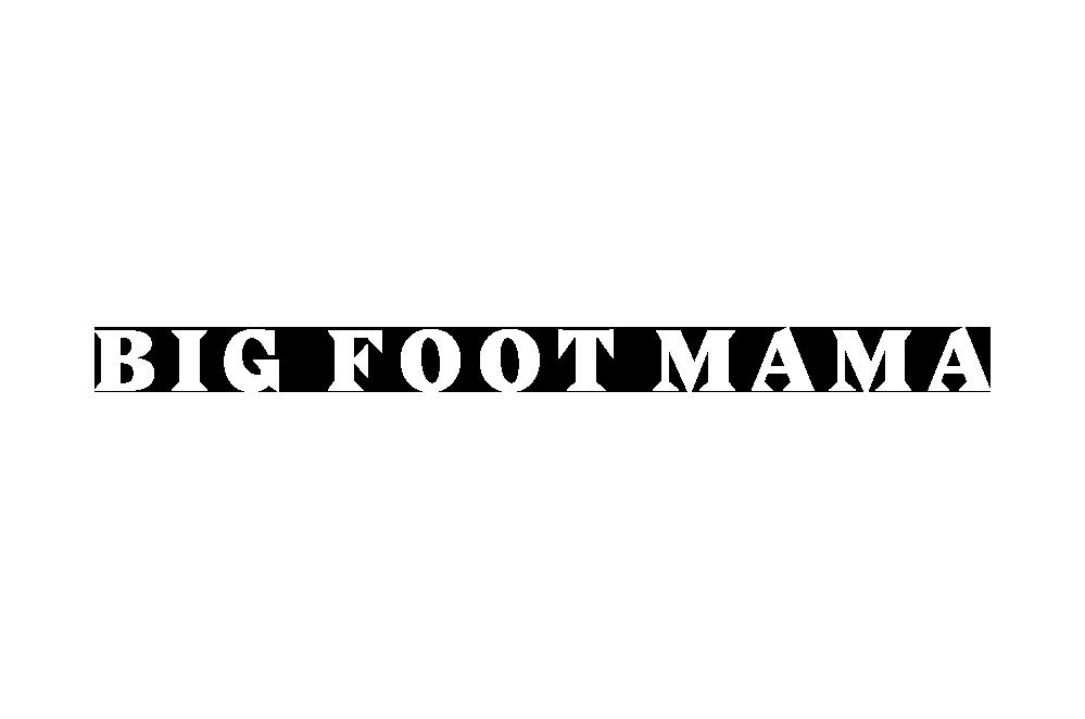 bfm-logo_negativ_enovrsticni_1.png