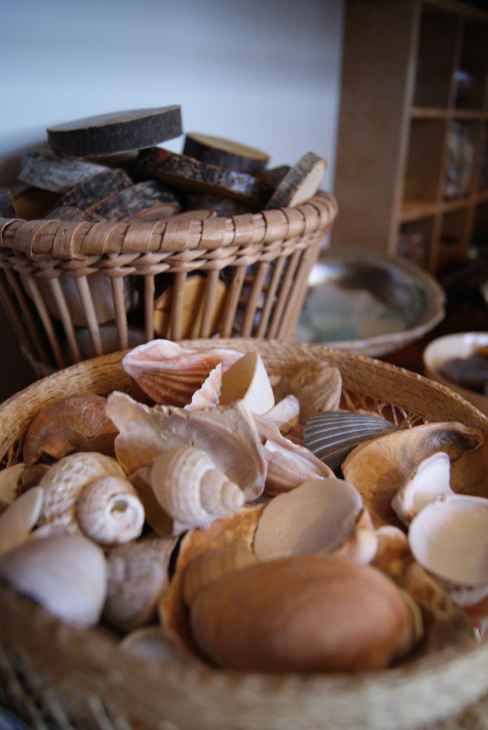 Shells studio.JPG