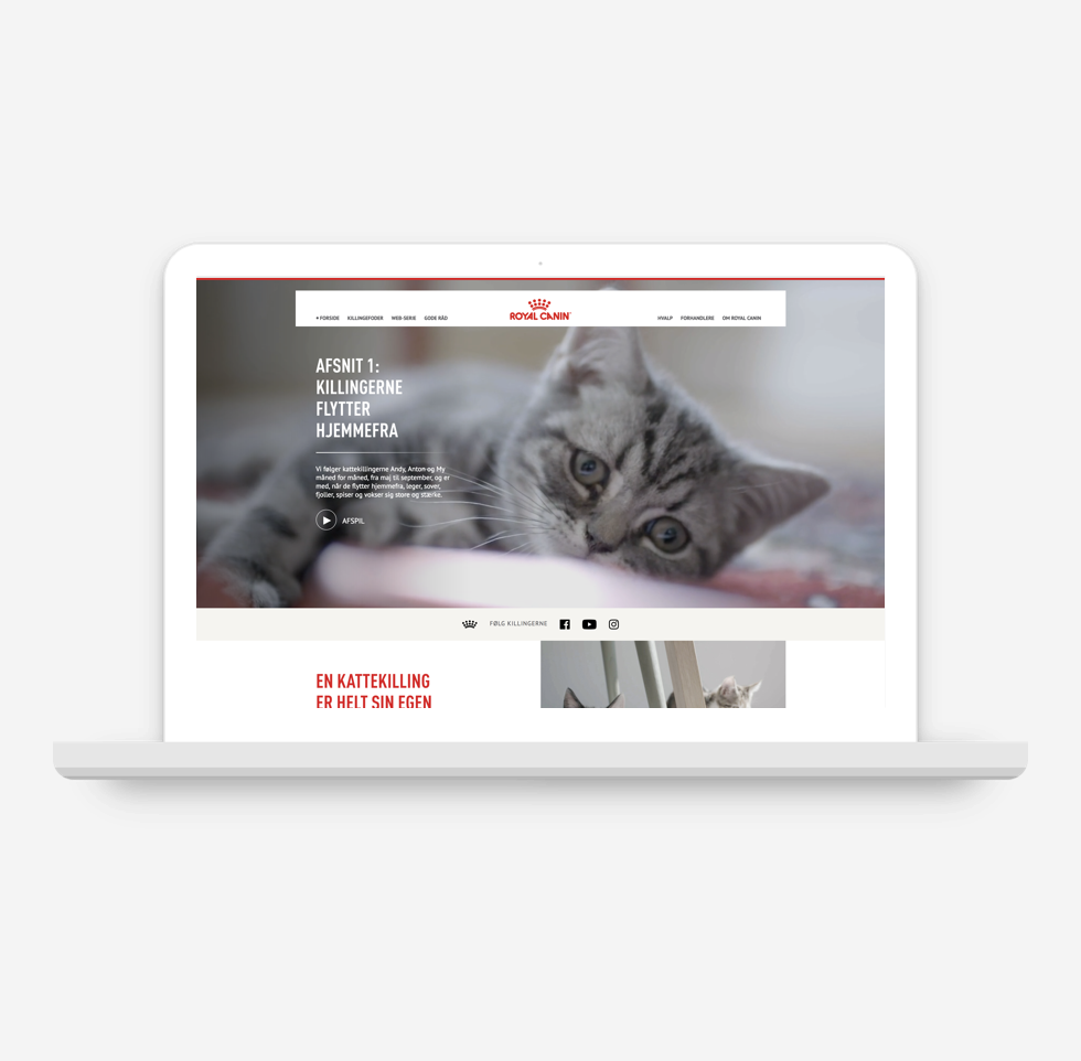 From kitten to cat - campaign website - Client: Royal Canin DenmarkWhere: Ogilvy Denmark (2018)My role:UX conceptInformation architectureWireframing