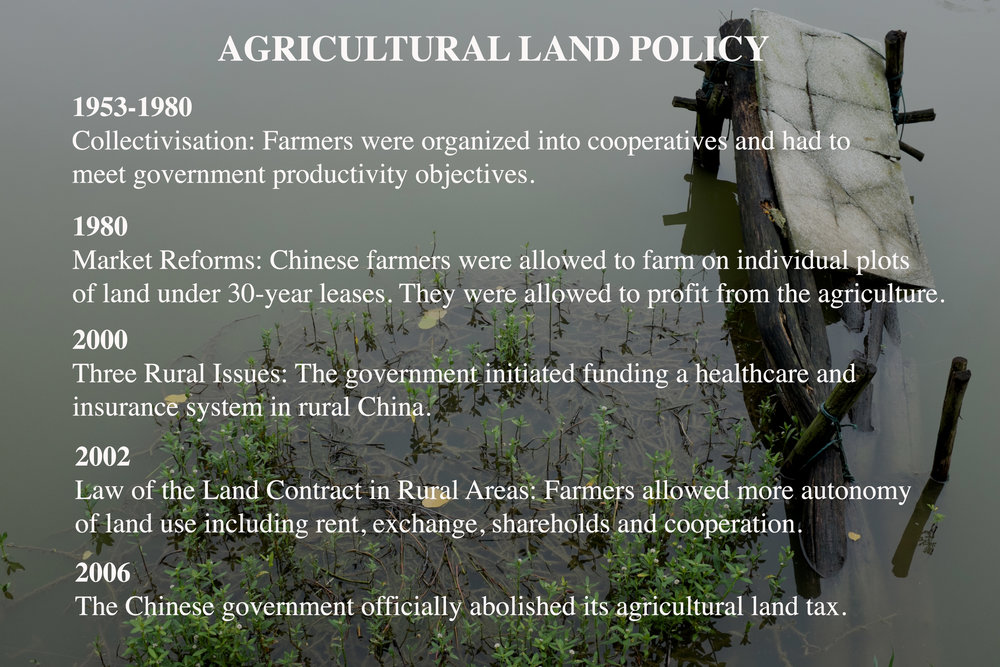 land-policy.jpg