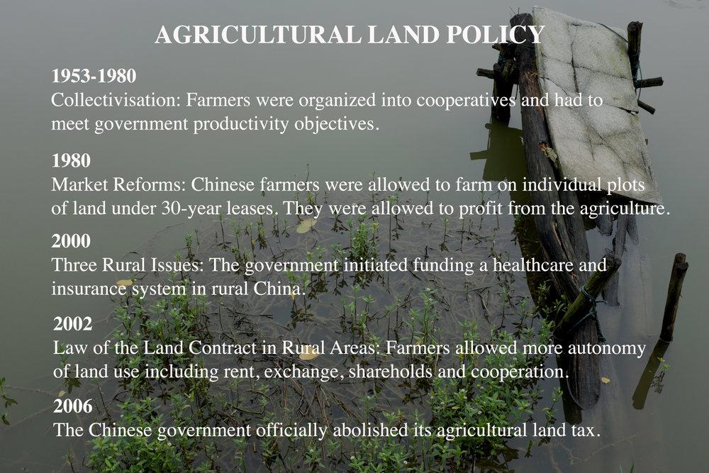 land-policy.jpg
