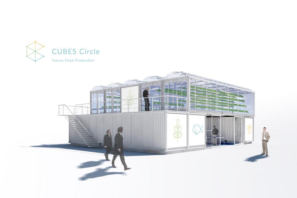 The CUBES Circle