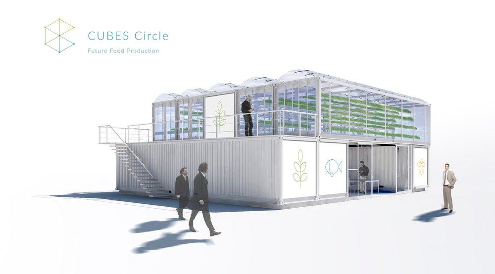 Der CUBES Circle