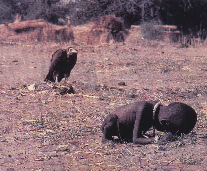 vulture_attacks_child.jpg
