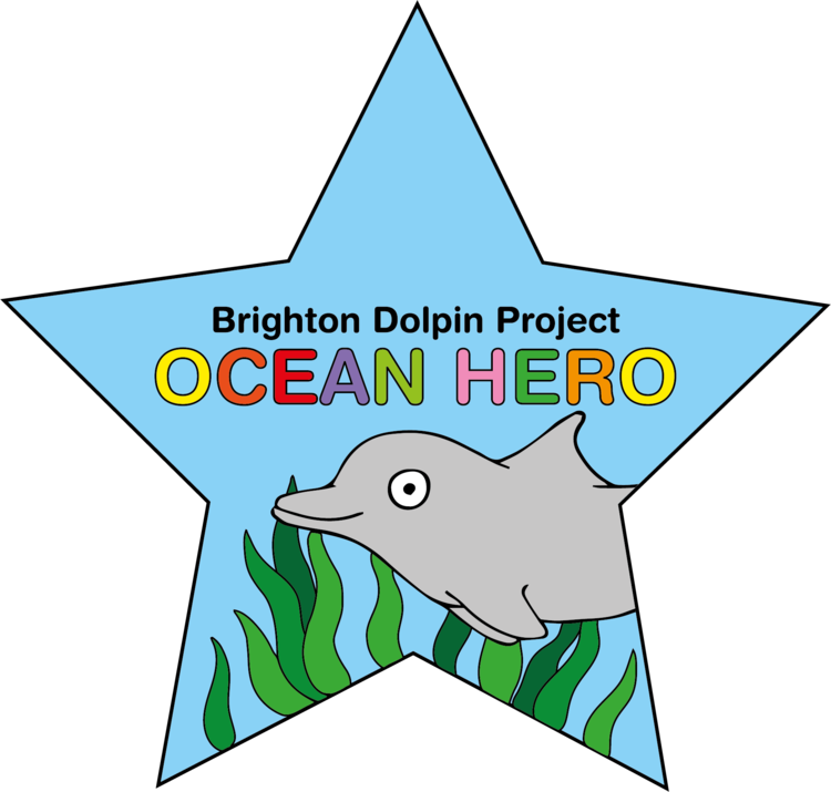 Become an Brighton Dolphin Project Ocean Hero!