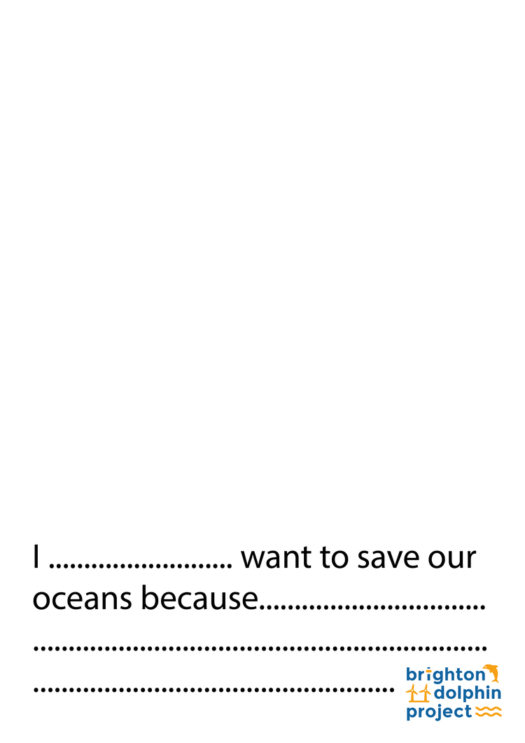 Why do you want to save our oceans? Download and colour in our poster to show us what makes you to save the oceans.