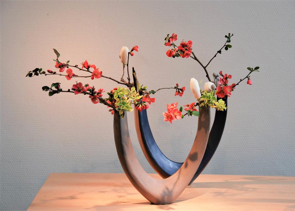 3 jiyu dubbele u magnolia chaen.jpg