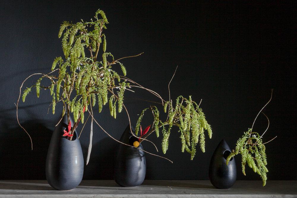 10 jiyu wisteria zw druppels_.jpg