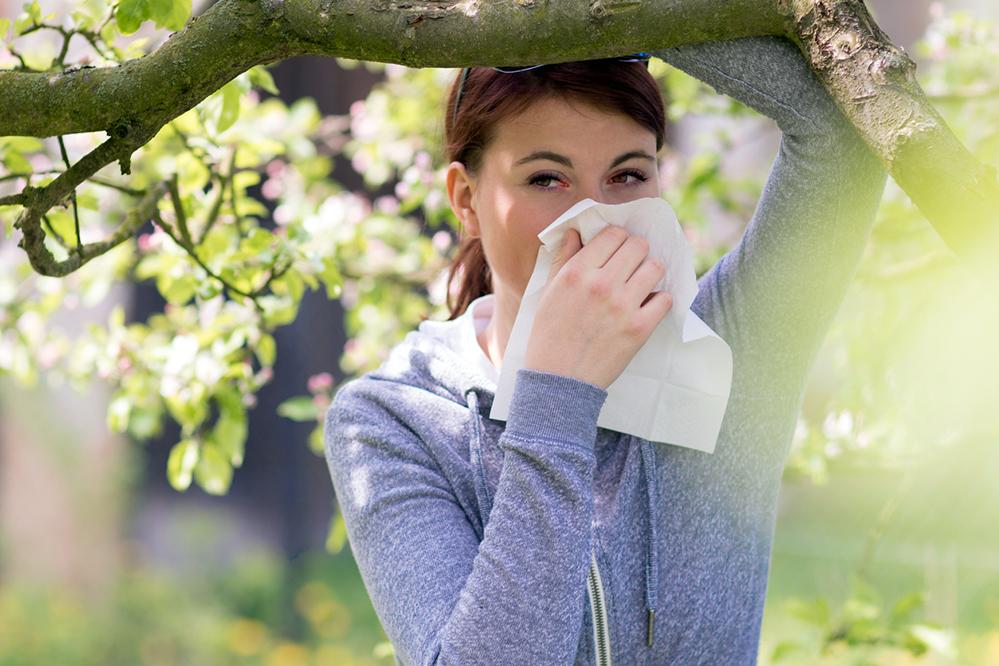 owc-allergies.jpg