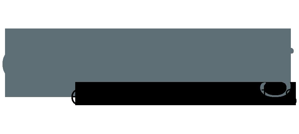 coachingelements.png