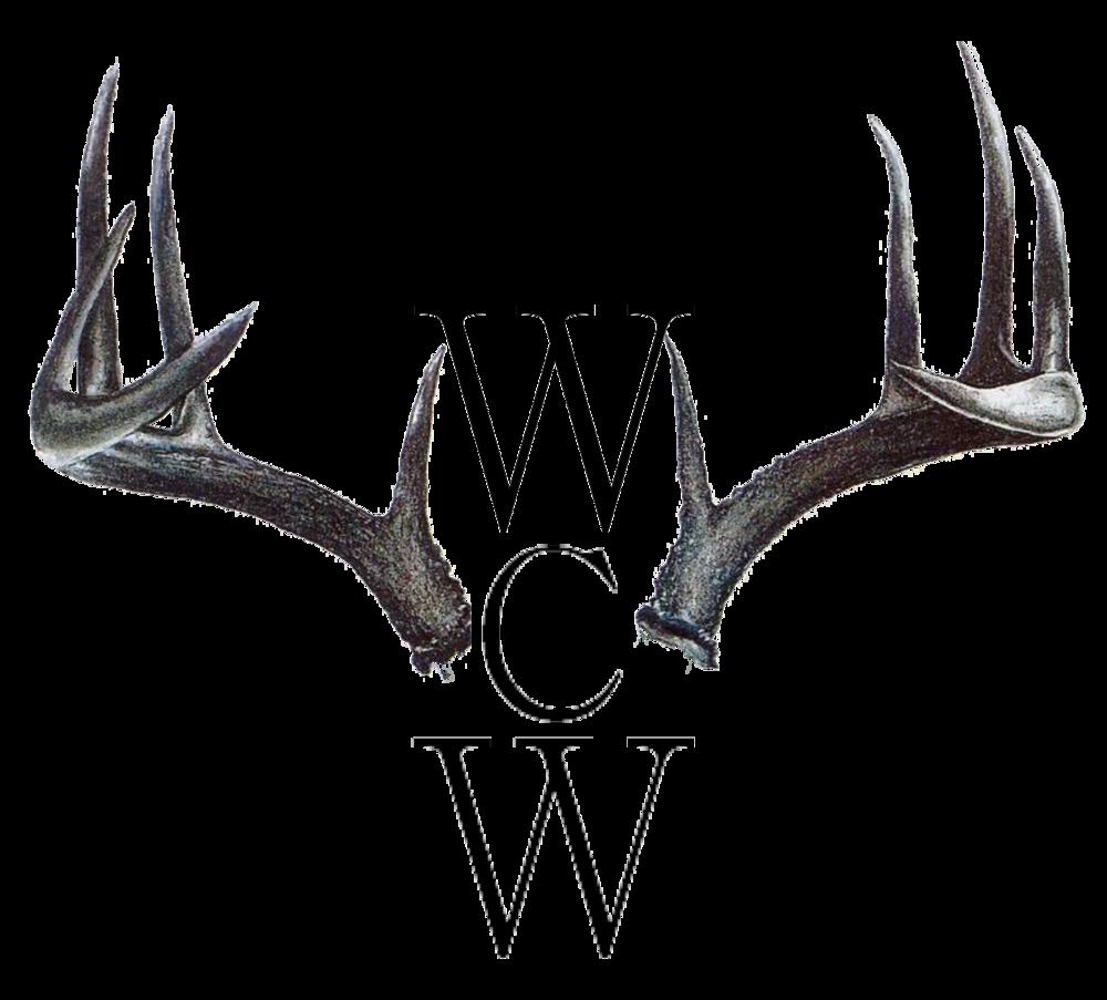 wcw-temp logo.png