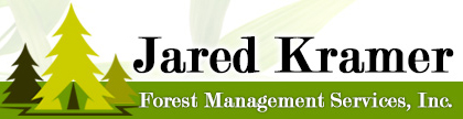 JaredKramerForestHDR - Logo.jpg