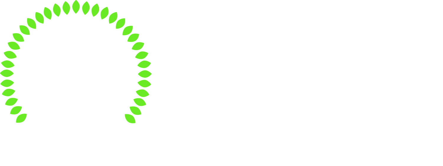 Fairbank Village BIA