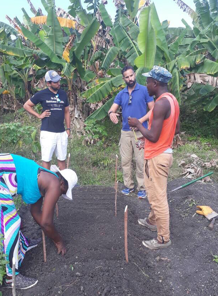 Our Partners - June Lite Super Foods is partnering with a dynamic team of engaged individuals in Haiti that are dedicating themselves to sharing their knowledge of agriculture, food science and the Haitian landscape of today. The wealth of their contributions will help create jobs, sustainable farming practices and nutritional benefits for the Haitian people nationwide. Social impact development is at the forefront of all of our intentions leading to deliberate cooperative actions.Our teff culture, agricultural approach and experimental phase is being supervised by doctor Zerihun Tadele, a world renowned Teff specialist and leading scientist at the University of Bern in Switzerland.