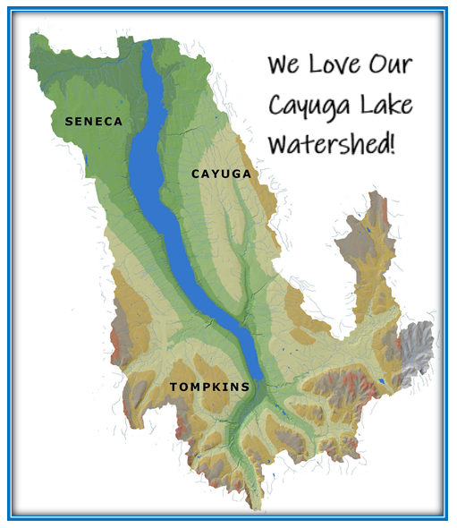 Our Cayuga Lake Watershed- 800+ square miles, 44 municipalities and 100,000 wonderful people!