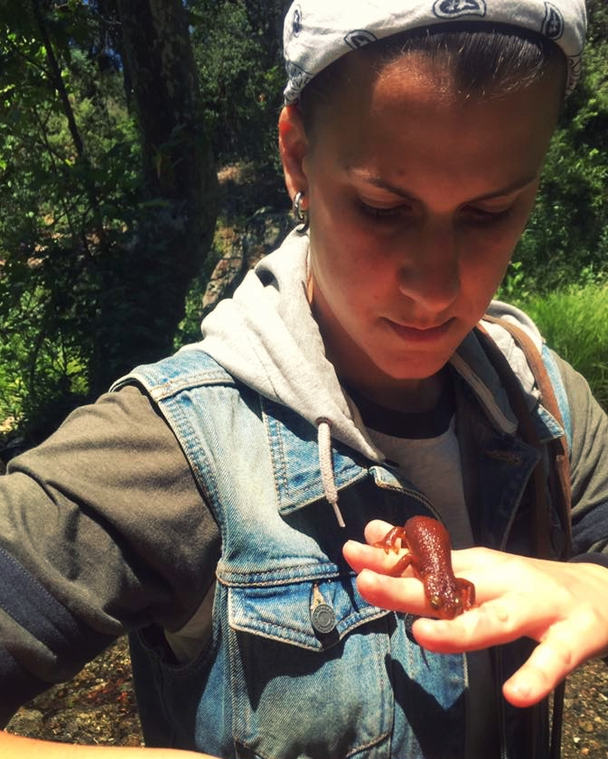 Making friends with a California newt (Taricha torosa)