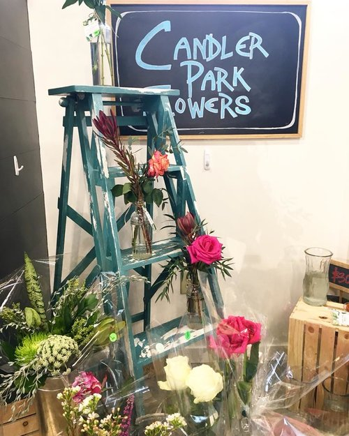 candler-park-flowers.jpg