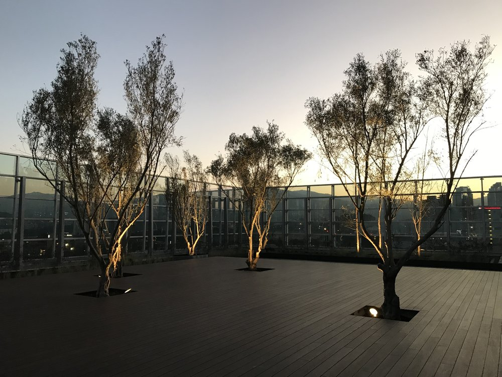Park Plaza Torre 3 Penthouse