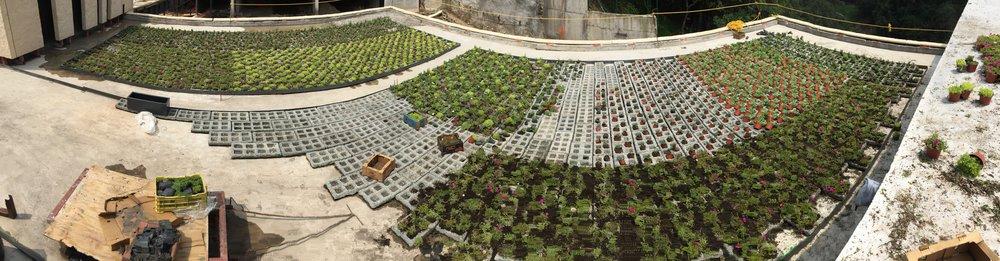 plantica_privee_panoramica3.jpg