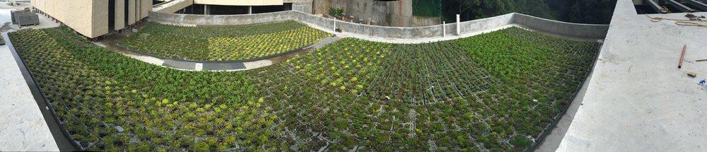 plantica_privee_panoramica6.jpg