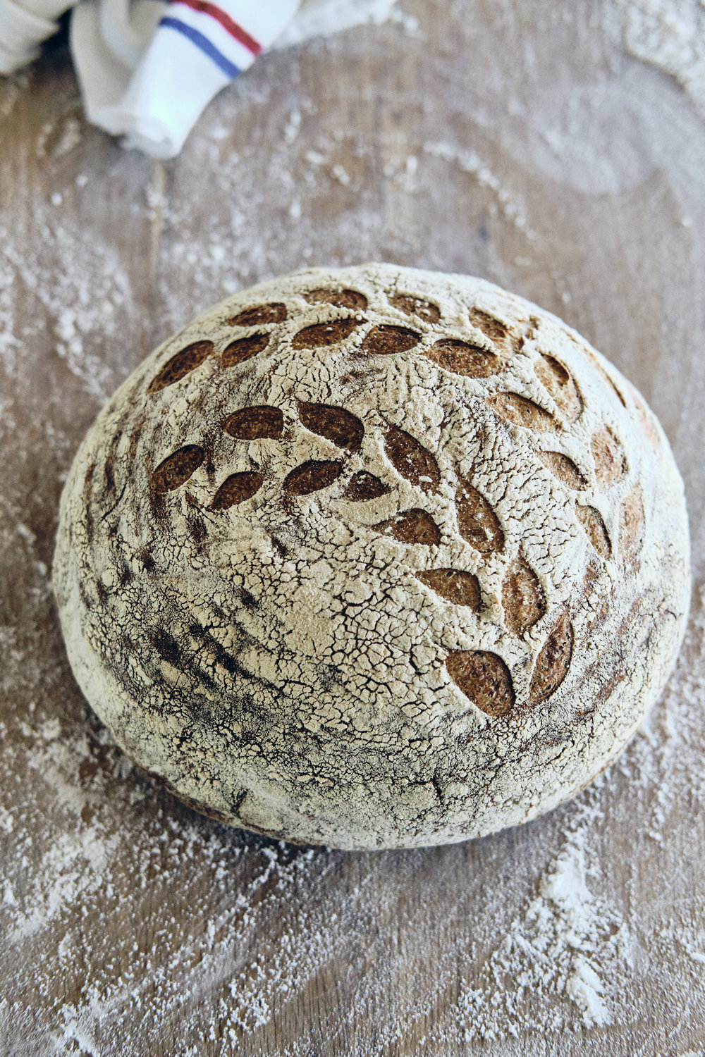 fridays @ 10aM beginning in july - Bread Talk & TastingCome out and learn about the latest addition to our farm - our certified organic bakery. Taste all of our gluten-filled offerings and leave with a new understanding of the art of making bread.10$ per personNo advance registration needed. Meet at farmstand.