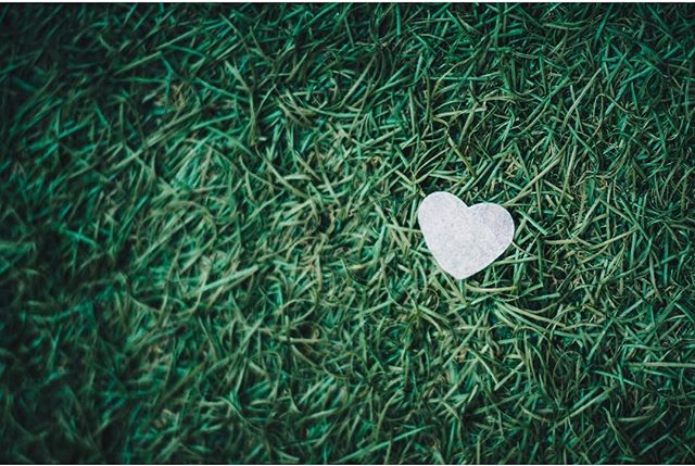 It's a beautiful thing to love what you do, and we love giving people incredible lawns, year-round: no maintenance, no mowing and no water required!  Get in on some self-love by investing in a lawn that always looks amazing, and for zero hassle!  Follow the link in our bio or give us a call today for a free quote 💚.
