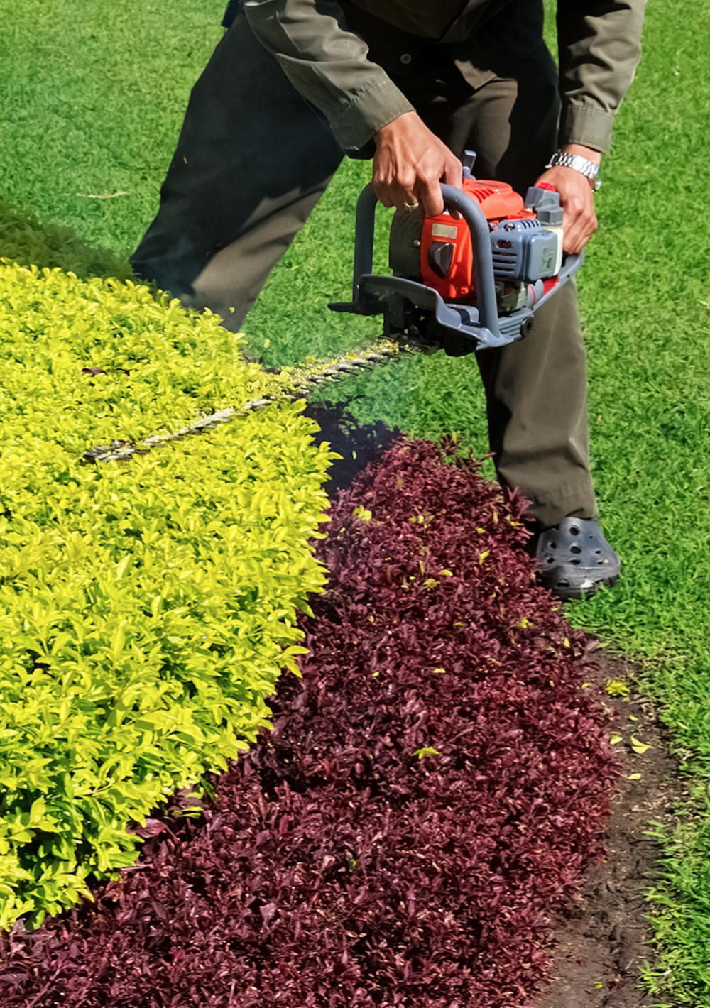 Landscape maintenance including shrub trimming in Wexford, Allegheny County, PA