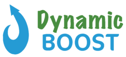 dynamic boost logo_no background.png