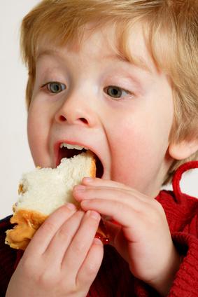 toddler eating sandwich.jpg