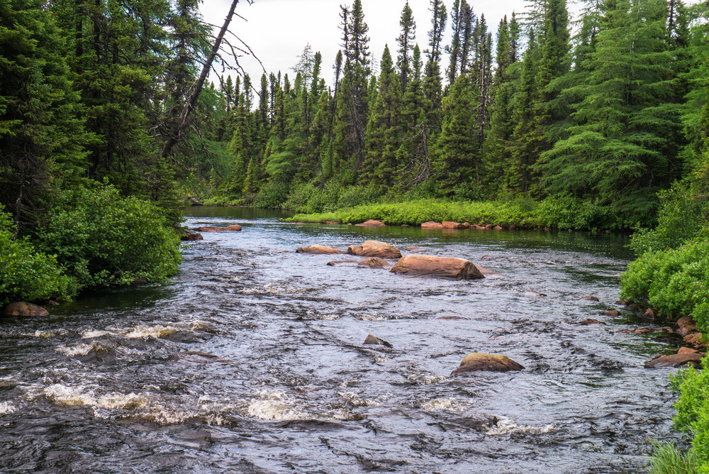 Newfoundland Environmental Consultant