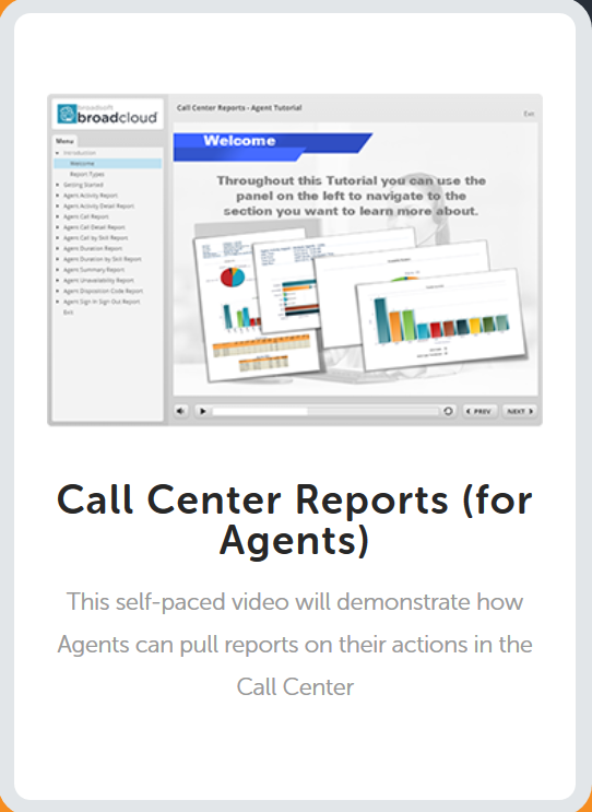 Call Center Report for Agents