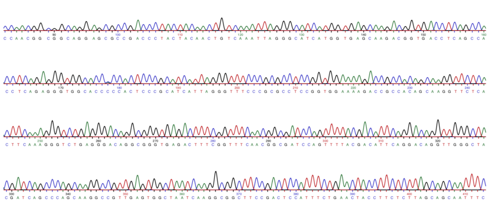 Snapshot of the nuclear gene sequencing results.