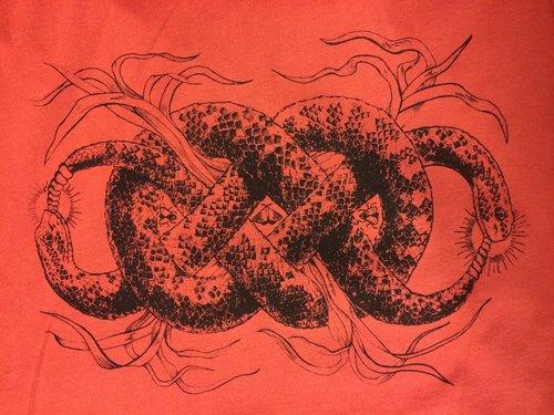 Solstice Snakes.jpg