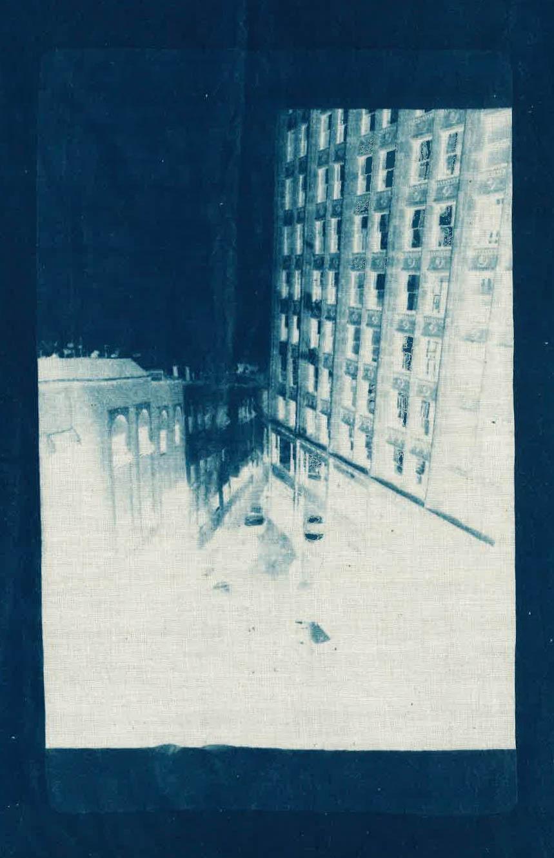 sage_casachi_cyanotype_scan-3.jpg