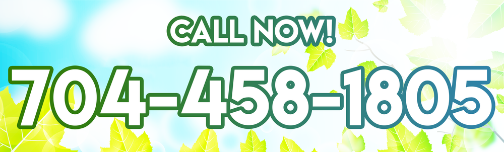 ad_special_spring_callNow_banner.png