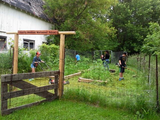 Garden 1 (1).jpg