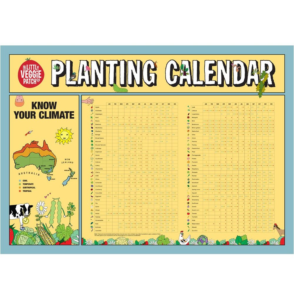 Australia has the perfect climate for growing year round! - Google a calendar for your state!
