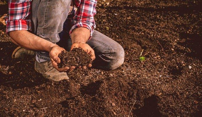 man-holding-soil.jpg
