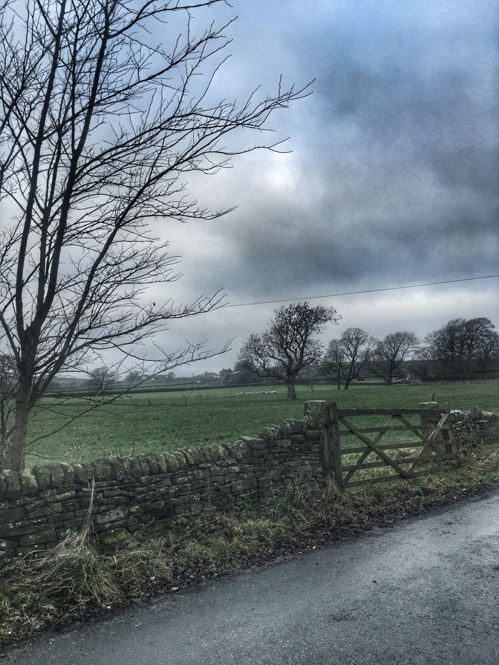 There's nothing like a blustery winter run to help get some headspace.