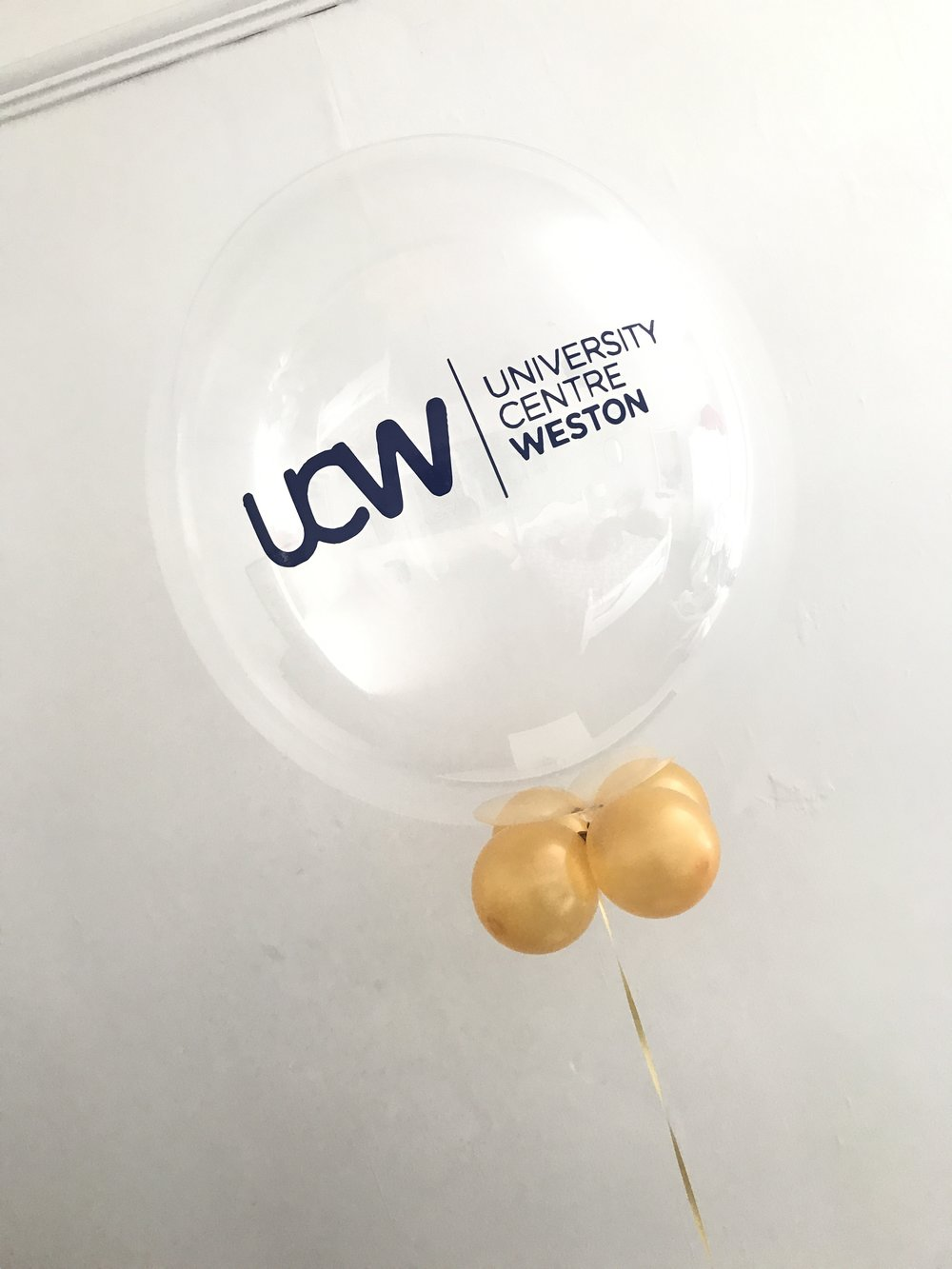 Branded Bubble Balloons