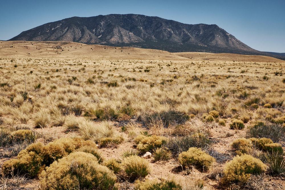 Corrizo Mountain outside of White Oaks