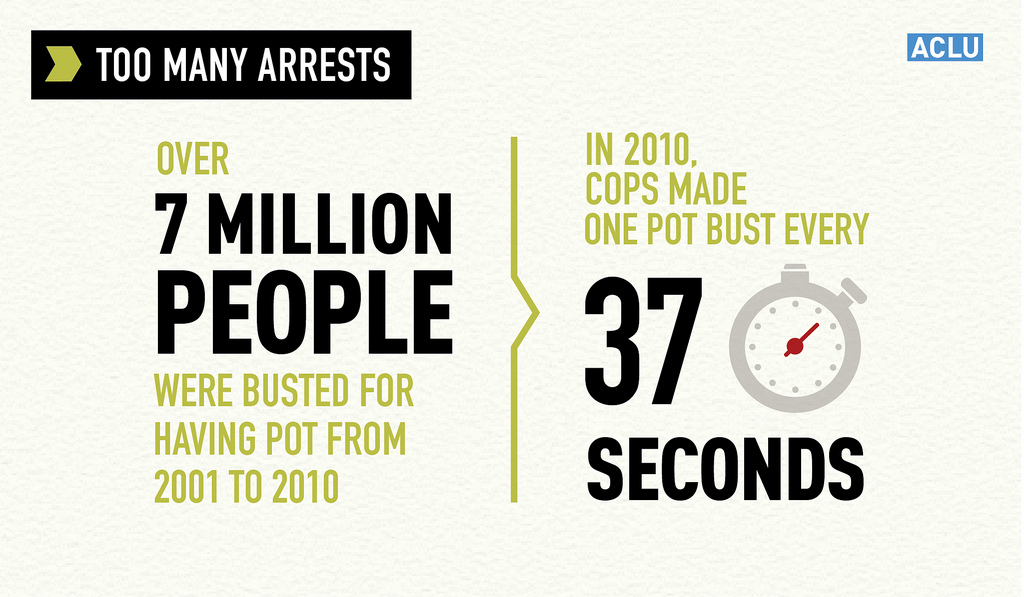 In 2010 Cops made one pot bust every 37 seconds