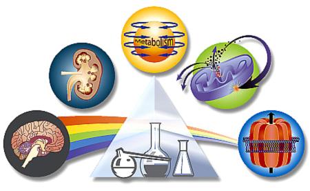 Journal of Pharmacolofy CBD Quality of Life Parkinsons