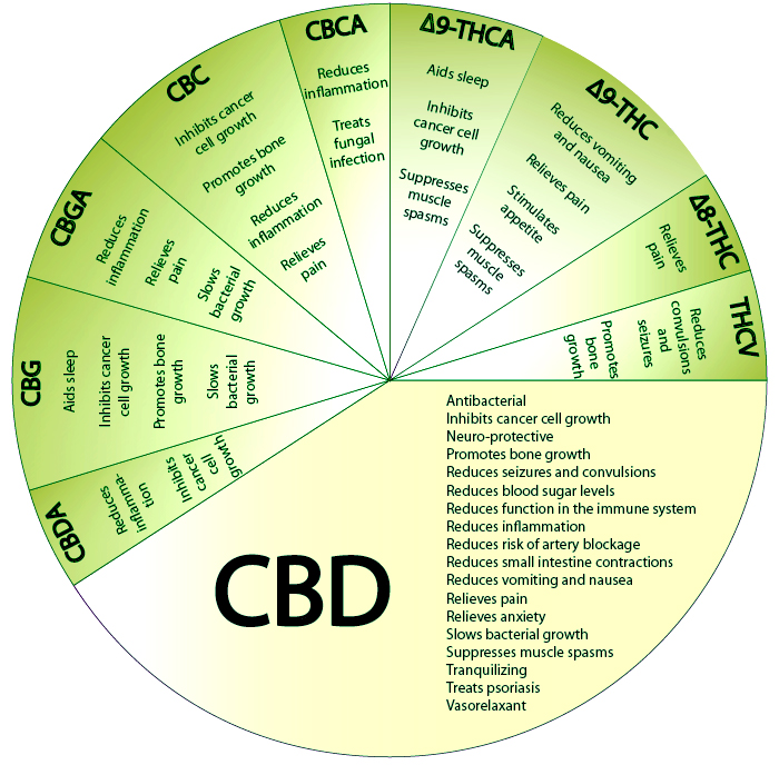 Cannabinoid effects chart CBD