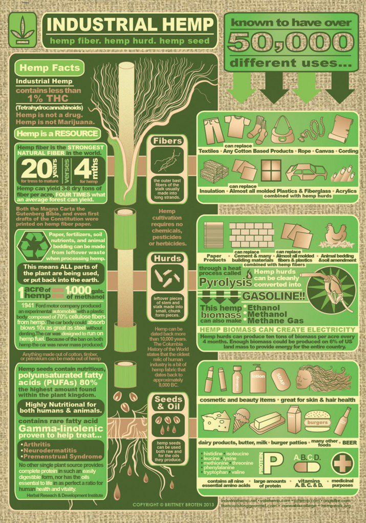Hemp Use Infographic
