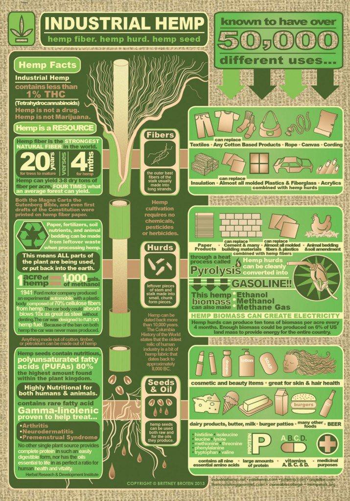 Hemp Use Infographic