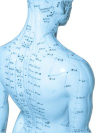 Acupuncture Concept Chart on blue human body