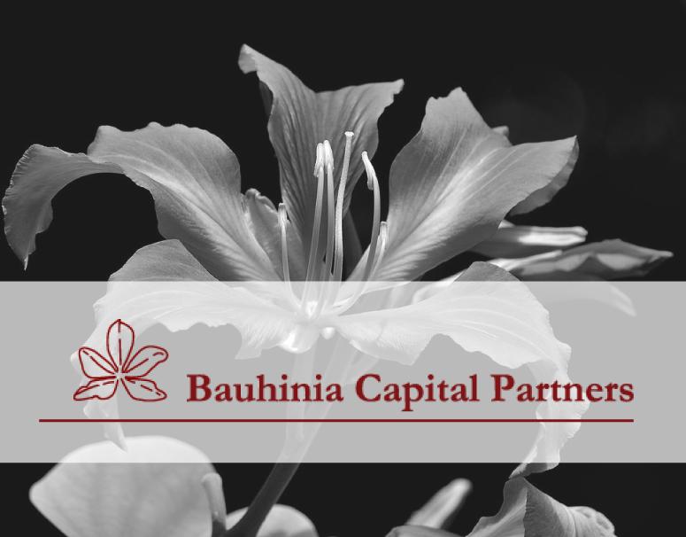 partners-bauhinia.png