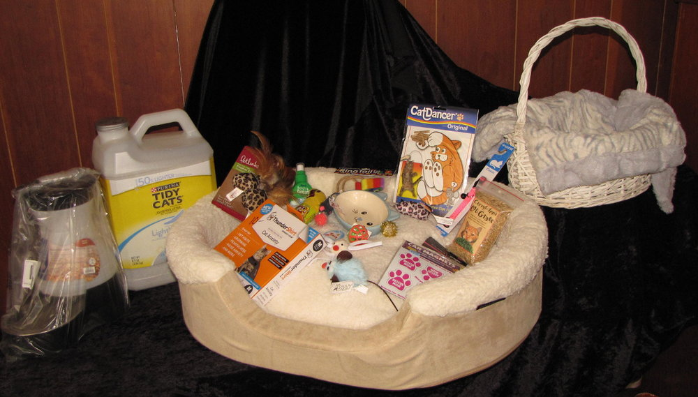 Kitty's Good Life Basket
