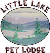 Little Lake 500.jpeg